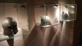 Bari Museo 2