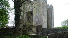 Blarney Castle (2)