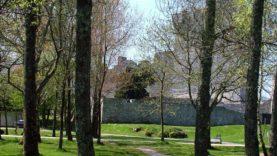 Blarney Castle (3)
