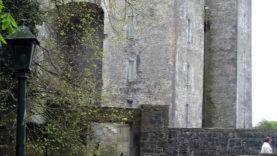 Blarney Castle (9)
