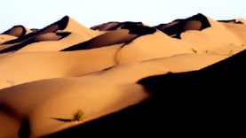 C01-Deserto