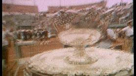 Coppa Davis 41
