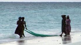 Foto Zanzibar 14