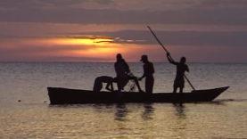 Foto Zanzibar 16