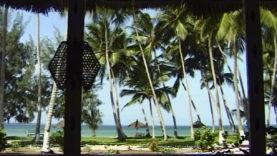 Foto Zanzibar 19