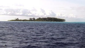 Foto Zanzibar 3