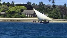Foto Zanzibar 36