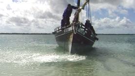 Foto Zanzibar 38