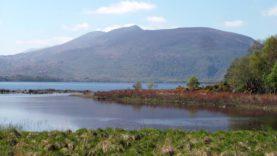Killarney Park (18)
