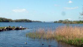 Killarney Park (2)