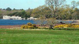Killarney Park (26)