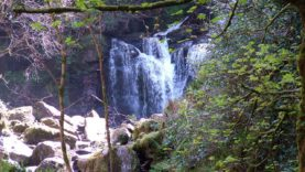 Killarney Park (30)