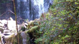 Killarney Park (31)