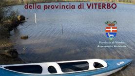 Label Viterbo copia