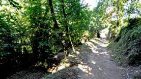 Monte Solaro15
