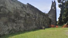 Mura5