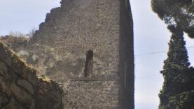 Mura6