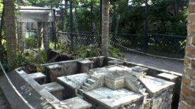 Pompei Casa Loreio Tiburtino (20)