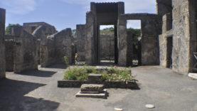 Pompei Casa Loreio Tiburtino (28)