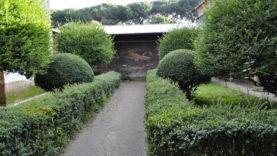 Pompei Casa Venere in Conchiglia (3)