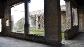 Pompei Casa Venere in Conchiglia (9)