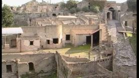 Pompei Terme Suburbane (19)