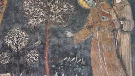 Predica agli Uccelli