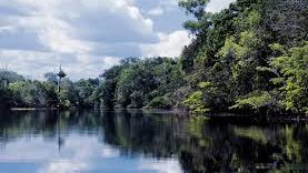 Rio Tiené2