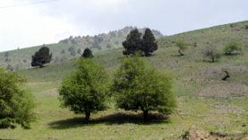 Uzbekistan Fergana (1)