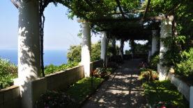 Villa San Michele29