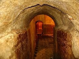 amelia cisterne