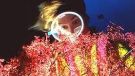 Storie in blu: RAFFAELLA SCHILLER (Modelle subacquee)
